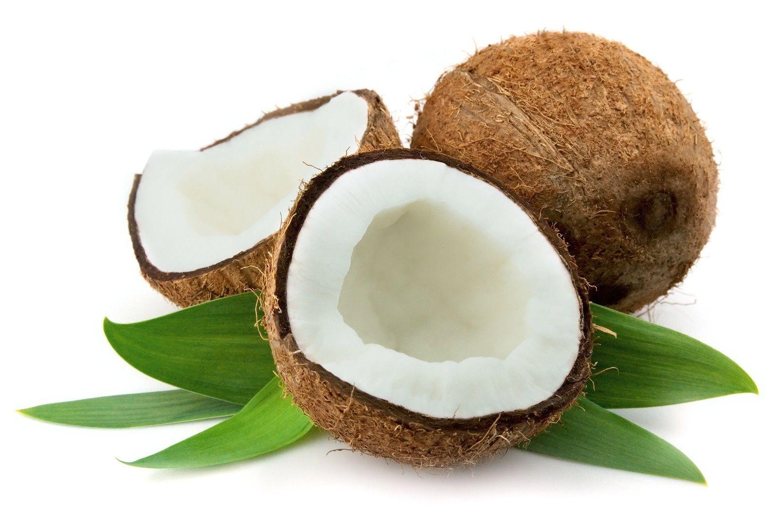 coconut-s-11196